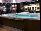 Système autonome de balboa extérieur Sexe Jacuzzi Surf Swim Pool SPA M-3373