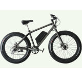 Novo Fasion Beach Cruiser, Big Tire Electric Bicycle (JB-TDE00Z)