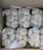 Frucht-Gemüse-verschiedenes Ineinander greifen-Nettobeutel für Verpackung