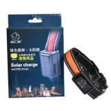 Migliore collare di cane solare di vendita della carica del USB del LED di cane di sicurezza chiara solare del collare per l'animale domestico