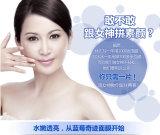 Маска OEM/ODM естественной голубики красотки лицевая забеливая лицевую маску