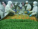 IQF Bevroren Gemengde Groenten met Uitstekende kwaliteit