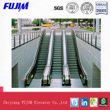 Type de plein air avec la capacité de transport Escalator 4500kg~9000kg
