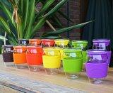 600 ml de colores doble pared de vidrio taza de té taza de té con el filtro de oficina