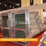 Клетка батареи цыпленка яичка оборудования цыплятины Tianrui горячая продавая автоматическая
