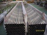Caldaia dell'acciaio austenitico di ASTM, surriscaldatore, Calore-Scambiatore e tubi del condensatore saldati A249