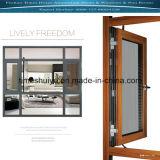 Fenêtres en aluminium avec la plus récente de conception et de l'isolation thermique