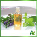 Pure Nature 50% Prix d'huile essentielle de menthe poivrée Mentha Arvensis