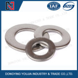 DIN125 de Duidelijke Wasmachine van het roestvrij staal