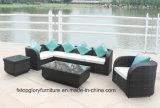 Mobilia esterna del giardino del sofà rurale del rattan (TG-032)