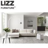 居間(LZ-714)のための簡単な様式のソファー