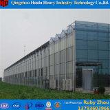 De Serre van het Glas van de Prijs van de fabriek met Hydroponic Systeem