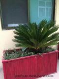Caixa do plantador do jardim de Fiberglass/FRP
