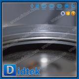 Didtekのステンレス鋼CF8mはPiateのウエファーの小切手弁を選抜する
