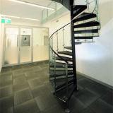 Al aire libre de metal mayorista contemporáneo escalera de caracol