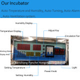 This Approved Factory Updated Poultry Egg Incubator Hatching Machinery