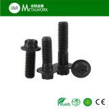 M5 M6の炭素鋼のTorxヘッドフランジのボルト(DIN34800)