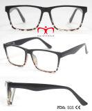 Het hete Verkopen en de Modieuze Glazen van de Lezing Eyewear (WRP702879)