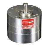 Pompa a ingranaggi di ceramica resistente agli acidi CB-Bns20