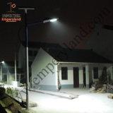 6m Pole 60W à LED lumière LED solaire (DZS-06-60W)