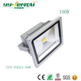 IP66 imperméabilisent le projecteur extérieur de la lumière DEL (YYST-TGDJC1-100W)