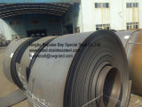 Ssの管の管の管(201/AISI201/SUS201)の等級J1 J3 J4 Ddqの品質のためのステンレス鋼のストリップ