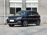 Elektrische Auto van de Leverancier van China de Gouden met Hoge Prestaties