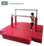 De Apparatuur van de Gymnastiek van de Rekstok van de Jonge geitjes van de Prijs van de fabriek voor Jonge geitjes