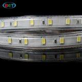 SMD5630照明のための高い内腔110V 120V 127V ETL LEDライトストリップ
