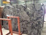 Losa de mármol gris nublado para cocina, cuarto de baño/Piso/pared