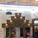 ETL FCC 열거된 바위 빛 단계 빛 Hardscape 빛