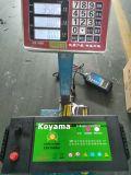 145g51-MF N150-MF 12V 150Ah SMF batterie du chariot