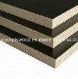 Venta caliente película marrón/negro ante la madera contrachapada de China Proveedor
