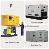 Звуконепроницаемые 250квт/313Ква Электроподогревателя Cummins генератор с ISO TUV SGS сертификатов