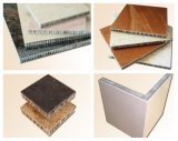 Le couvre-tapis de nid d'abeilles, le nid d'abeilles en aluminium lambrisse le prix fabriqué en Chine