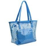 女性トートバック透過PVC浜は袋に入れる小さく装飾的なハンドバッグ(WDL01116)が付いている肩のハンドバッグを