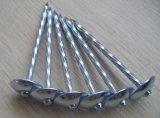 Clavos galvanizados del material para techos de la pista del paraguas hechos en China
