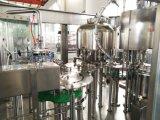 Ligne de remplissage de bouteilles de l'eau minérale (CGF8-8-3)