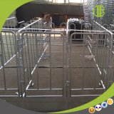 L'IMMERSION chaude a galvanisé la stalle de porc de stalle de gestation de porc