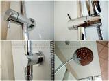 Wels Zustimmungs-Dusche-Spalte eingestellt mit Messingdusche-Kopf