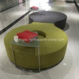Garten-Möbel-modernes Freizeit-Metallrahmen-Gewebe-Sofa