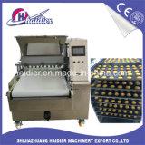 Macchina/biscotto di fabbricazione di biscotti di grande capienza fatto a macchina in Cina