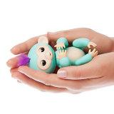 Finger-Spielzeug-interaktiver Fisch-Baby-Fallhammer als Kinder/Kind-Geschenk