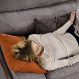 Sofá de la tela del color del café para los muebles G7606A de la sala de estar