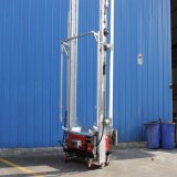Iacc Pflaster-Wiedergabe-Maschine Tupo heiße Verkäufe
