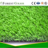 Putting Green Artificial Turf (MA)