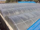 유연한 연결 압출기 폴리탄산염 구렁 장 Roofinh 장 밀어남 선