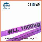 Imbracatura di sollevamento resistente dell'imbracatura rotonda di nylon del poliestere