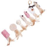 Brinquedos interativos do animal de estimação da pena do gato de 7 blocos com caixa de presente