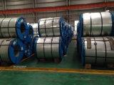 Lamiera di acciaio laminata a freddo (ST14)